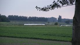 Groene zaken - Elly Brouwer Agrarisch Advies adviseert!